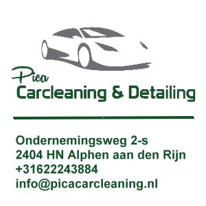 Pica Carcleaning (2)